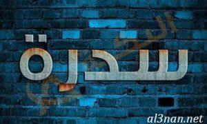 صور-اسم-سيدرا-2019-خلفيات-ورمزيات_00179-300x180 صور اسم سيدرا2019 خلفيات ورمزيات