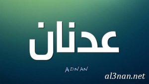 -اسم-عدنان-خلفيات-اسم-عدنان-رمزيات-اسم-عدنان_00303-300x170 صور اسم عدنان , خلفيات اسم عدنان , رمزيات اسم عدنان