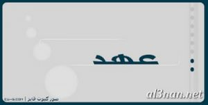 صور-اسم-عهد-خلفيات-اسم-عهد-رمزيات-اسم-عهد_00427-300x151 صور اسم عهد ، خلفيات اسم عهد ، رمزيا اسم عهد