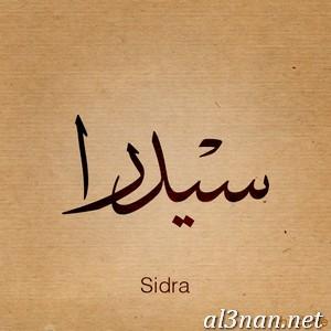 -اسم-سيدرا-خلفيات-اسم-سيدرا-رمزيات-اسم-سيدرا_00251 صور اسم سيدرا ، حلفيات اسم سيدرا ، رمزيات اسم سيدرا