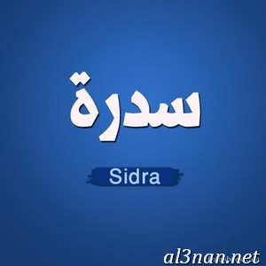 -اسم-سيدرا-خلفيات-اسم-سيدرا-رمزيات-اسم-سيدرا_00267 صور اسم سيدرا ، حلفيات اسم سيدرا ، رمزيات اسم سيدرا