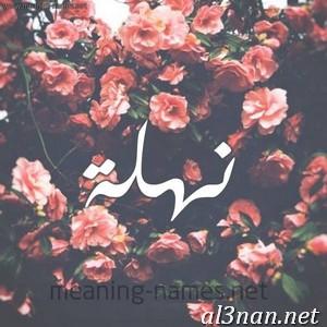 صور-اسم-نهلة-خلفيات-اسم-نهلة-رمزيات-اسم-نهلة_00465 صور اسم نهلة ، خلفيات اسم نهلة ، رمزيات اسم نهلة