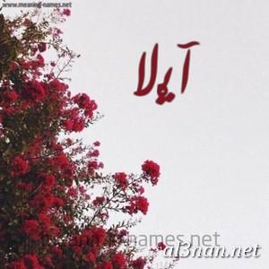 صور-اسم-ايلا-خلفيات-اسم-ايلا-رمزيات-اسم-ايلا_00407 صور اسم ايلا ، خلفيات اسم ايلا ، رمزيات اسم ايلا