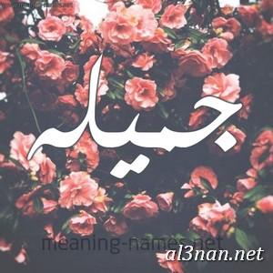 صور-اسم-جميلة-خلفيات-اسم-جميلة-رمزيات-اسم-جميلة_00083 صور اسم جميله  ،خلفيات اسم جميله  ،رمزيات اسم جميله