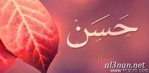 صور-اسم-حسن-خلفيات-اسم-حسن-رمزيات-اسم-حسن_00735-300x147 صور اسم حسن ، خلفيات اسم حسن ، رمزيات اسم حسن