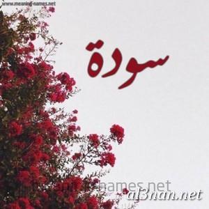 صور-اسم-سودة-خلفيات-اسم-سودة-رمزيات-اسم-سودة_01064 صور اسم سودة ، خلفيت اسم سودة ، رمزيات اسم سودة