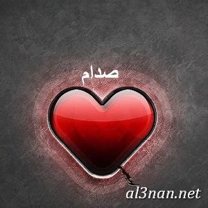 صور-اسم-صدام-خلفيات-اسم-صدام-رمزيات-اسم-صدام_00380 صورلاسم صدام،خلفيات لاسم صدام ،رمزيات لاسم صدام