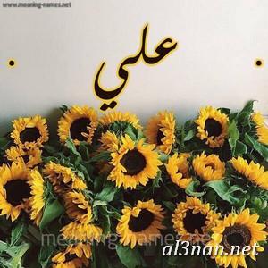 صور-اسم-علي-خلفيات-اسم-علي-،-رمزيات-اسم-علي_00330 صور اسم علي ، خلفيات اسم علي، رمزيات اسم علي