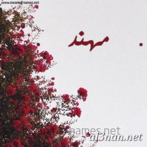 صور-اسم-مهند-خلفيات-اسم-مهند-،-رمزيات-اسم-مهند_00585 صور اسم مهند ، خلفيات اسم مهند ، رمزيات اسم مهند