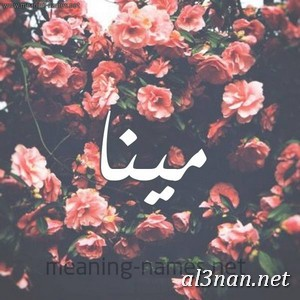 صور-اسم-مينا-خلفيات-اسم-مينا-،-رمزيات-اسم-مينا_00618 صور اسم مينا ، خلفيات اسم مينا ، رمزيات اسم مينا