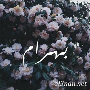 صور-اسم-بهرام-،خلفيات-اسم-بهرام-،-رمزيات-اسم-بهرام_00289 صور اسم بهرام 2020,خلفيات اسم بهرام ,رمزيات اسم بهرام