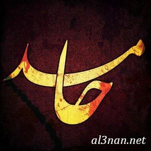 صور-اسم-حامد-خلفيات-اسم-حامد-رمزيات-اسم-حامد_00295 صور اسم حامد ،خلفيات اسم حامد ،رمزيات اسم حامد