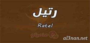 صور-اسم-رتيل-خلفيات-اسم-رتيل-رمزيات-اسم-رتيل_00453-300x143 صور اسم رتيل،خلفيات اسم رتيل ،رمزيات اسم رتيل