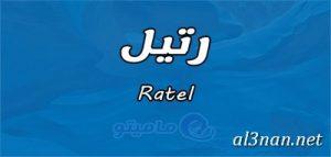 صور-اسم-رتيل-خلفيات-اسم-رتيل-رمزيات-اسم-رتيل_00461-300x143 صور اسم رتيل،خلفيات اسم رتيل ،رمزيات اسم رتيل