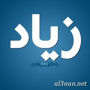 صور-اسم-زياد،-خلفيات-اسم-زياد-رمزيات-اسم-زياد_00114-1 صور اسم زياد ،خلفيات اسم زياد ،رمزيات اسم زياد