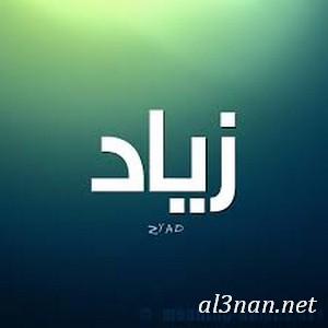 صور-اسم-زياد،-خلفيات-اسم-زياد-رمزيات-اسم-زياد_00118 صور اسم زياد ،خلفيات اسم زياد ،رمزيات اسم زياد