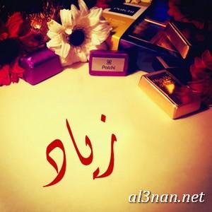 صور-اسم-زياد،-خلفيات-اسم-زياد-رمزيات-اسم-زياد_00120 صور اسم زياد ،خلفيات اسم زياد ،رمزيات اسم زياد