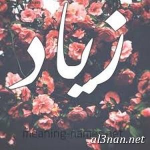 صور-اسم-زياد،-خلفيات-اسم-زياد-رمزيات-اسم-زياد_00124 صور اسم زياد ،خلفيات اسم زياد ،رمزيات اسم زياد