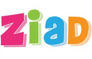 صور-اسم-زياد،-خلفيات-اسم-زياد-رمزيات-اسم-زياد_00127-300x192 صور اسم زياد ،خلفيات اسم زياد ،رمزيات اسم زياد