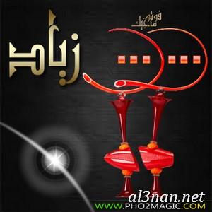 صور-اسم-زياد،-خلفيات-اسم-زياد-رمزيات-اسم-زياد_00133 صور اسم زياد ،خلفيات اسم زياد ،رمزيات اسم زياد