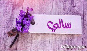 صور-اسم-سالي-،-رمزيات-اسم-سالي،-خلفيات-اسم-سالي_00025-300x177 صور اسم سالى2020,خلفيات اسم سالى ,رمزيات اسم سالى