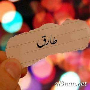 صور-اسم-طارق،-خلفيات-اسم-طارق-رمزيات-اسم-طارق_00340 صور اسم طارق،خلفيات اسم طارق ،رمزيات اسم طارق