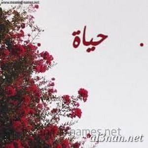 صور-لاسم-حياة-خلفيات-ورمزيات_00875 صور اسم حياة ،خلفيات اسم حياة،رمزيات اسم حياة