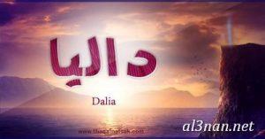 صور-اسم-داليا،-خلفيات-اسم-داليا-،-رمزيات-اسم-داليا_00375-300x157 صور اسم داليا 2020, خلفيات اسم داليا , رمزيات اسم داليا